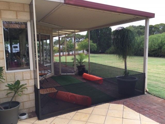 An excellent option to create an area that you can enjoy with your cat is  to enclose a patio or pergola. It allows the space to be multi-use and your  feline ... - Cat Enclosure Ideas